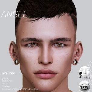 cleff ansel