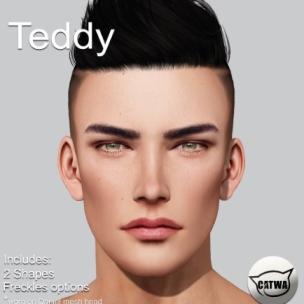 cleff teddy