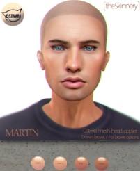 skinnery martin