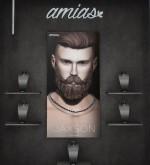 jail amias