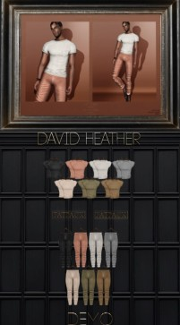 tmd David Heather