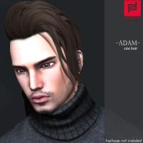 -FABIA HAIR- _Adam_