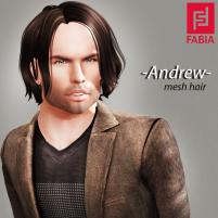 -FABIA- Mesh Hair _Andrew_
