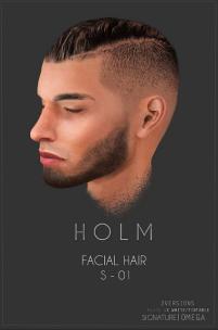 HOLM 10