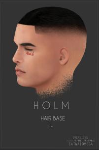 HOLM 11