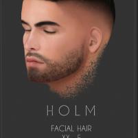 HOLM 12