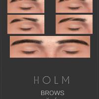 HOLM 13