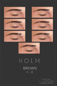 HOLM 15
