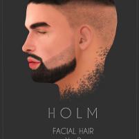 HOLM 21