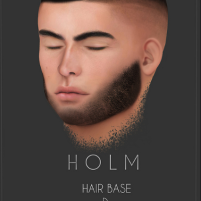 HOLM 3