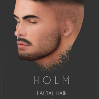 HOLM 4