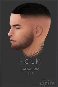 HOLM 6