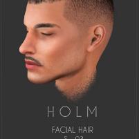 HOLM 9
