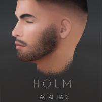 20190108 holm