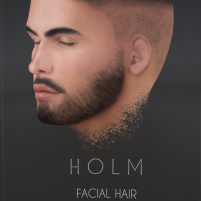 20190108 holm2