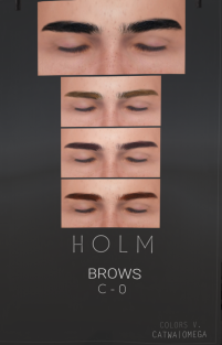 20190108 holm3