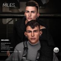 20190112 access miles