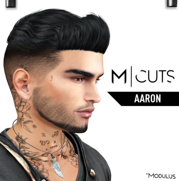 MODULUS AARON
