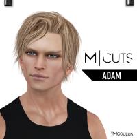 MODULUS ADAM