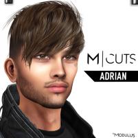 MODULUS ADRIAN