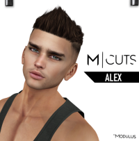 MODULUS ALEX