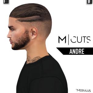 MODULUS ANDRE