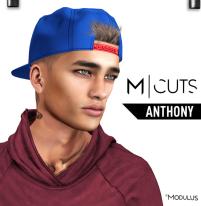 MODULUS ANTHONY