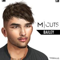 MODULUS BAILEY