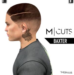 MODULUS BAXTER