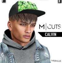MODULUS CALVIN
