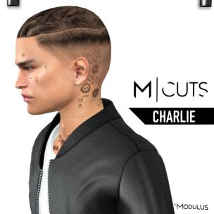 MODULUS CHARLIE