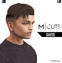 MODULUS DAVID