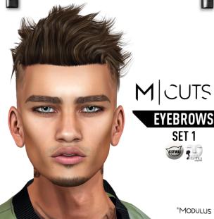 MODULUS EYEBROWS SET 1