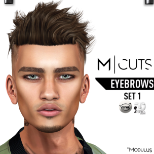 MODULUS EYEBROWS SET 1