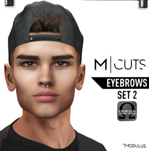 MODULUS EYEBROWS SET 2
