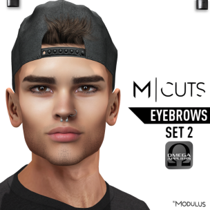MODULUS EYEBROWS SET 2