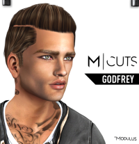 MODULUS GODFREY
