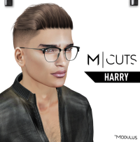 MODULUS HARRY