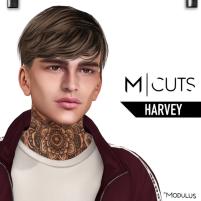 MODULUS HARVEY
