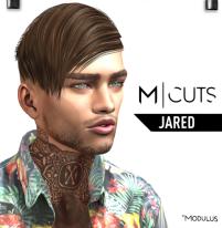 MODULUS JARED