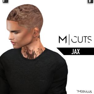 MODULUS JAX