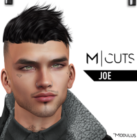 MODULUS JOE