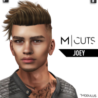 MODULUS JOEY