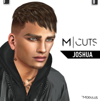 MODULUS JOSHUA