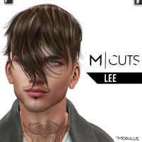 MODULUS LEE