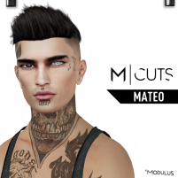 MODULUS MATEO