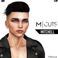 MODULUS MITCHELL