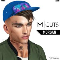 MODULUS MORGAN