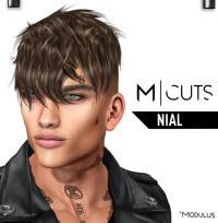 MODULUS NIAL