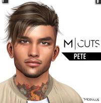 MODULUS PETE